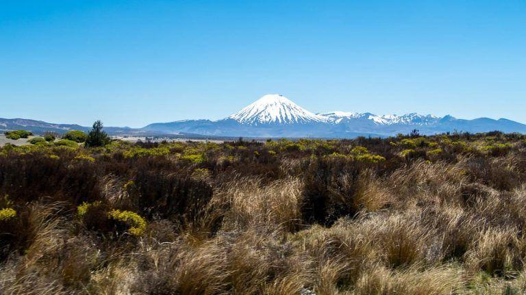 Etapa 16 por NZ camino del Tongariro: vistas desde el Rangipo Desert