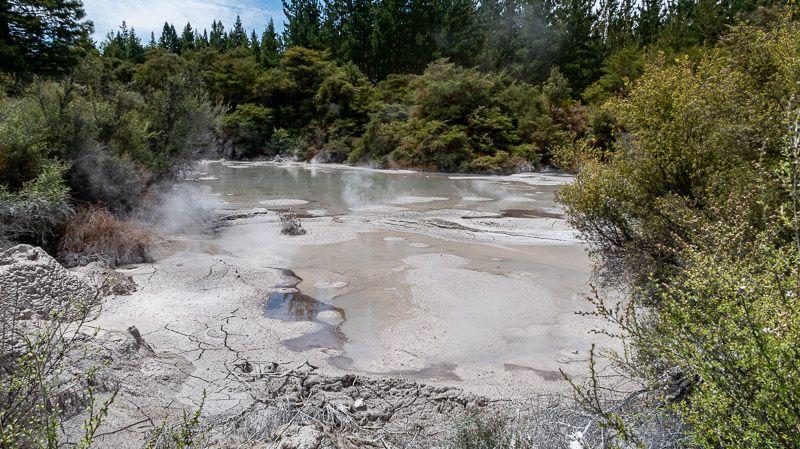Visitar Wai-O-Tapu: Mud Pools