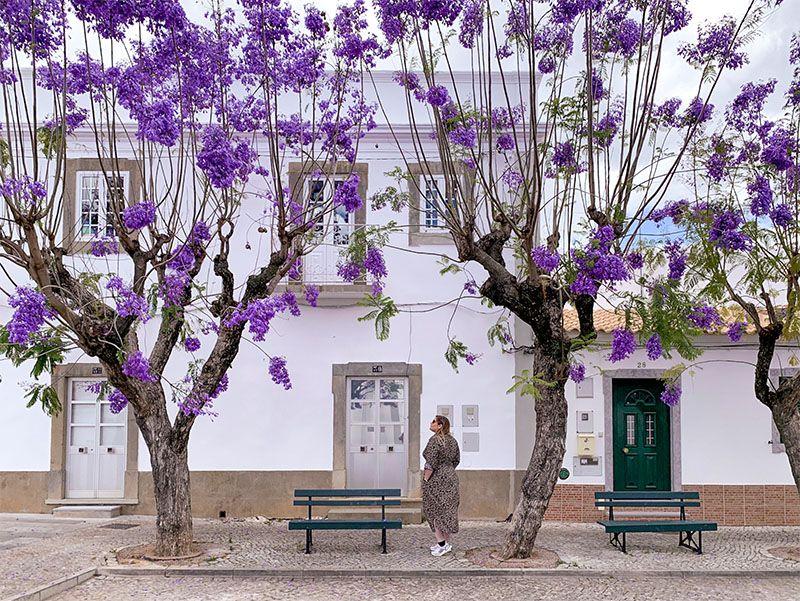 Qué ver en el Algarve: São Bras de Alportel