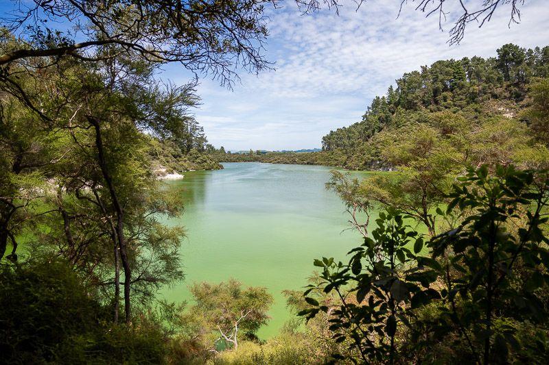 Visitar Wai-O-Tapu: lago Ngakoro