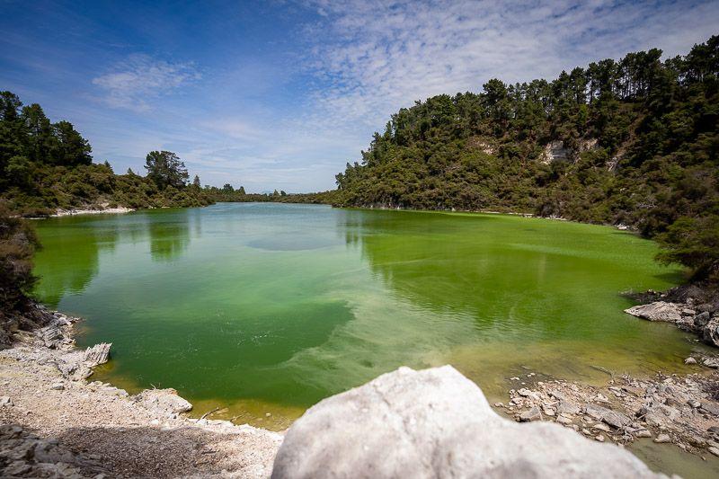 Visitar Wai-O-Tapu: el color del agua es impresionante