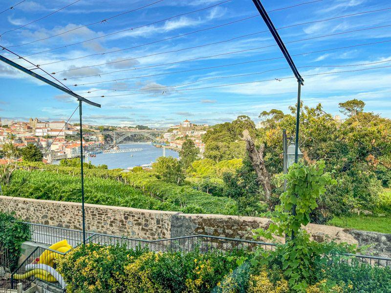 Dónde comer en Oporto: VINUM