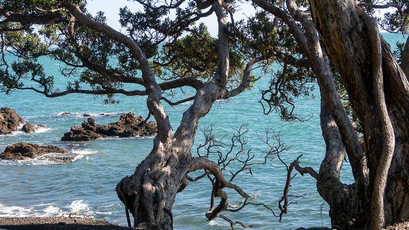 Etapa 20 por NZ en la península de Coromandel: Pueblo de Coromandel