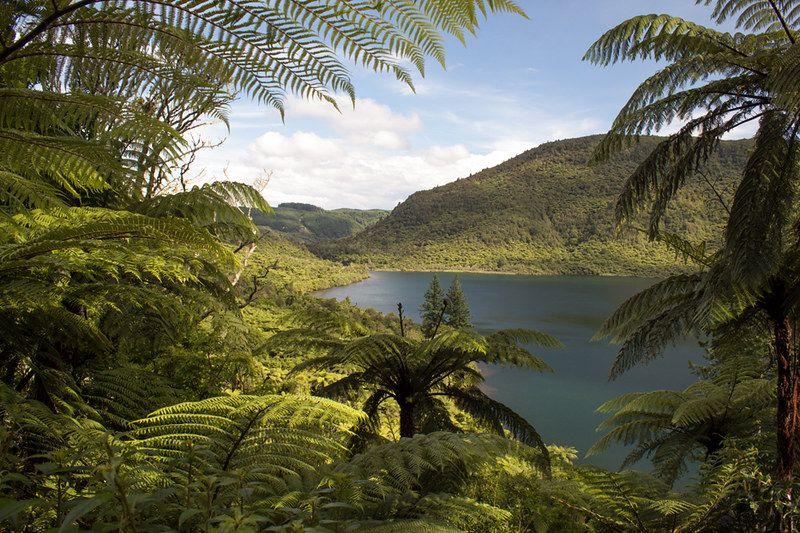 Qué hacer en Rotorua: visitar el Green Lake