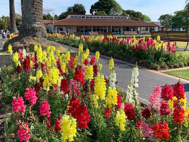 Qué hacer en Rotorua: flipar con sus jardines