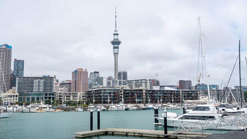 Qué hacer en Auckland: Disfrutar de las vistas desde el Viaduct Basin