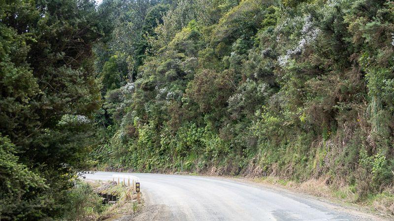 Etapa 20 por NZ en la península de Coromandel: Waiau Road