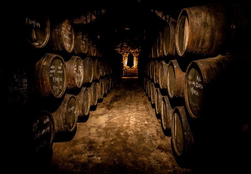 Mejores tours en Oporto: visitar una bodega