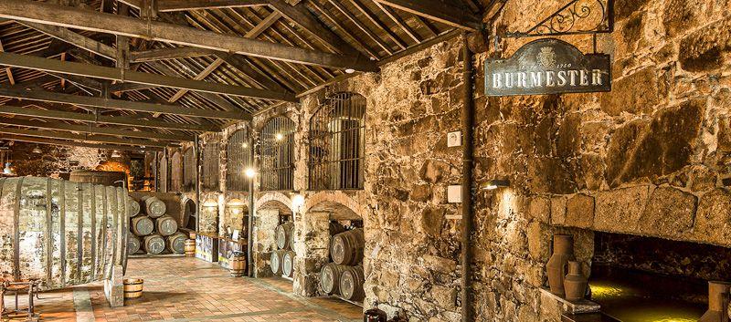 Visitar una bodega en Oporto: Burmester