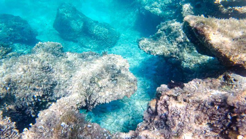 Qué ver en Formentera: snorkel en Formentera - 15 consejos para viajar a Ibiza: planifica bien los atardeceres - Las mejores playas y calas de Formentera