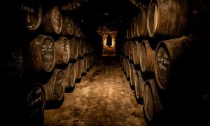 Visitar una bodega de vino en Oporto: consejos para elegir BIEN