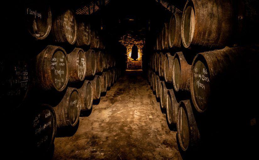 Visitar una bodega en Oporto, ¿cuál elegir?