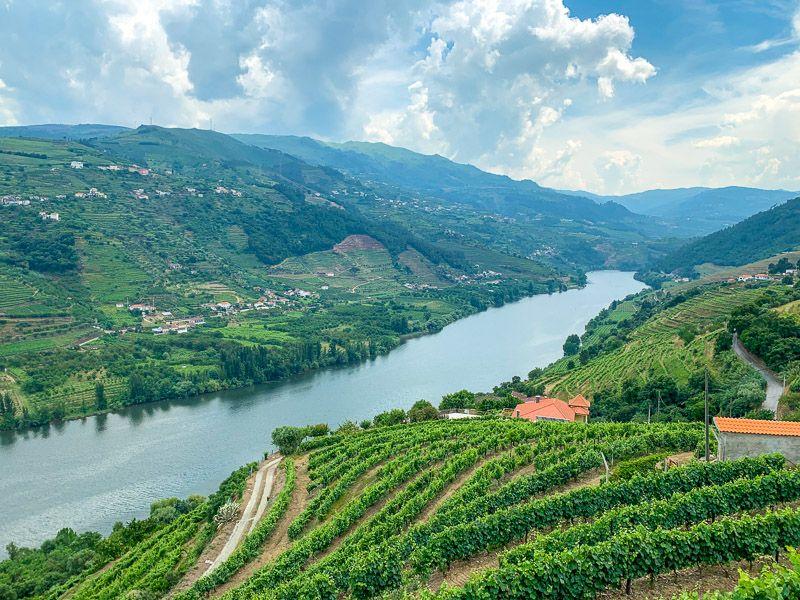 Visitar una bodega en Oporto: ¿cuál es el origen de este vino? - Excursiones desde Oporto - Las 12 mejores rutas en coche por Portugal [ITINERARIOS + MAPAS]