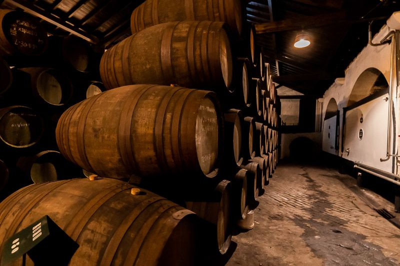 Visitar una bodega en Oporto: barricas de vino en Ferreira
