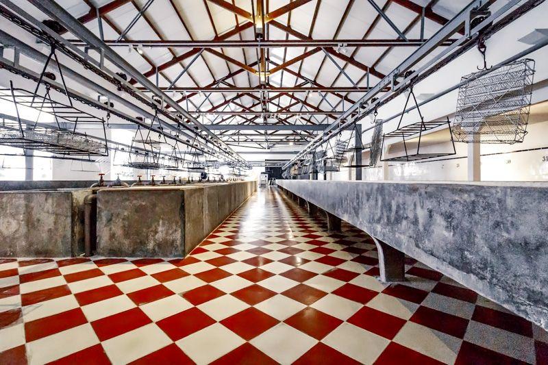 Qué ver en Portimao: Museo de Portimao