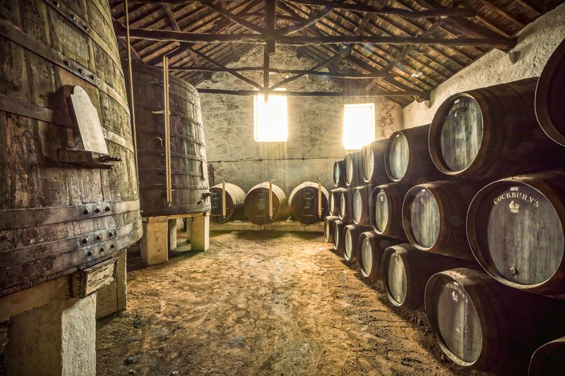 Visitar una bodega en Oporto: Cockburn's Port Wine Lodge