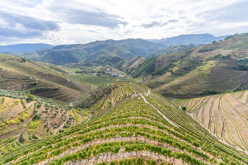 Ruta por la N2: viñedos del Douro