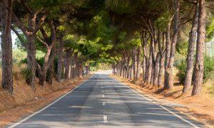 Ruta por la N2 | Etapa 5: Ferreira do Alentejo – Faro [MAPA + QUÉ VER + VÍDEO]