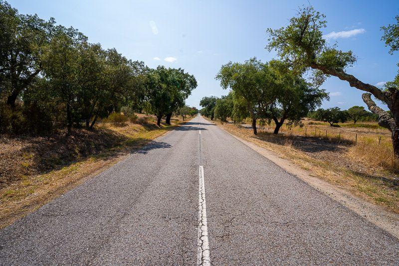 Etapa 4 de la ruta por la N2 entre Serta y Ferreira do Alentejo: así es el paisaje en esta zona - imprescindibles en la ruta N2